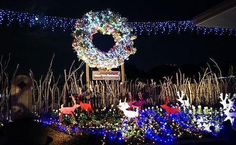 立川口ライトアップ