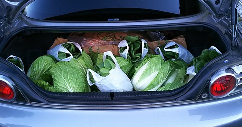 RX-8トランクに積んだ野菜
