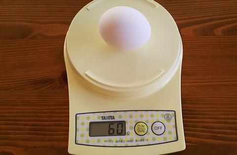 Mサイズの卵60g