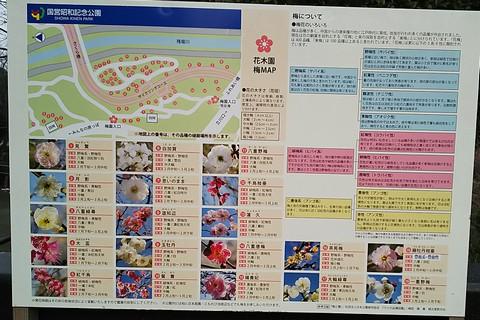 花木園マップ