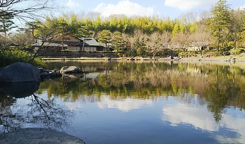 緑が綺麗になってきた日本庭園の様子