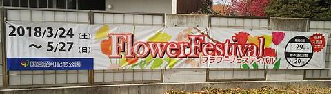 フラワーフェス