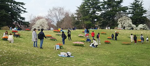 お花を撮影する人達