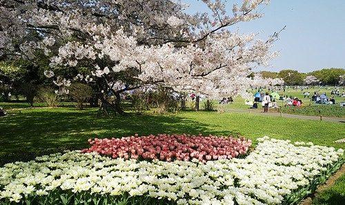 エイプリル昭和記念公園