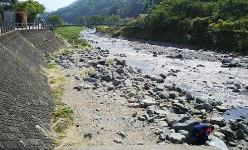 朝の道志川