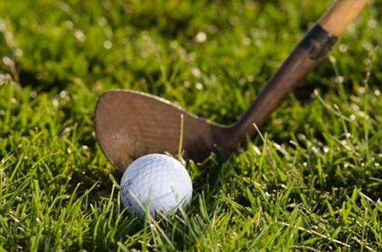ゴルフと芝