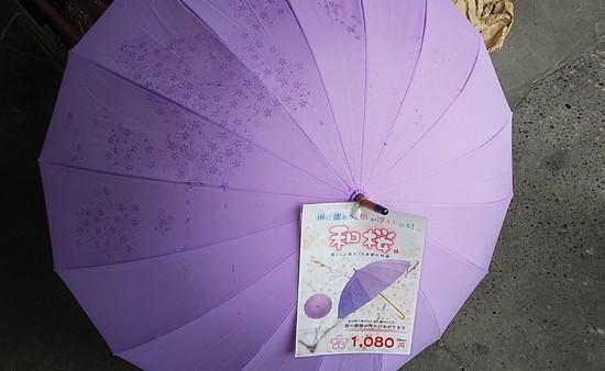 桜の模様が浮き出る傘