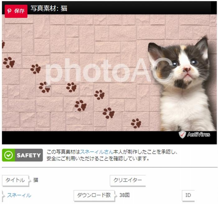 猫の合成写真